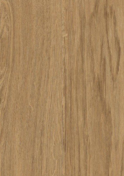 Vinylboden WaterCork Promal Oak
