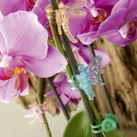Prima Flora Orchideenclips