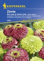 Kiepenkerl Zinnie Red Lime + Green Lime